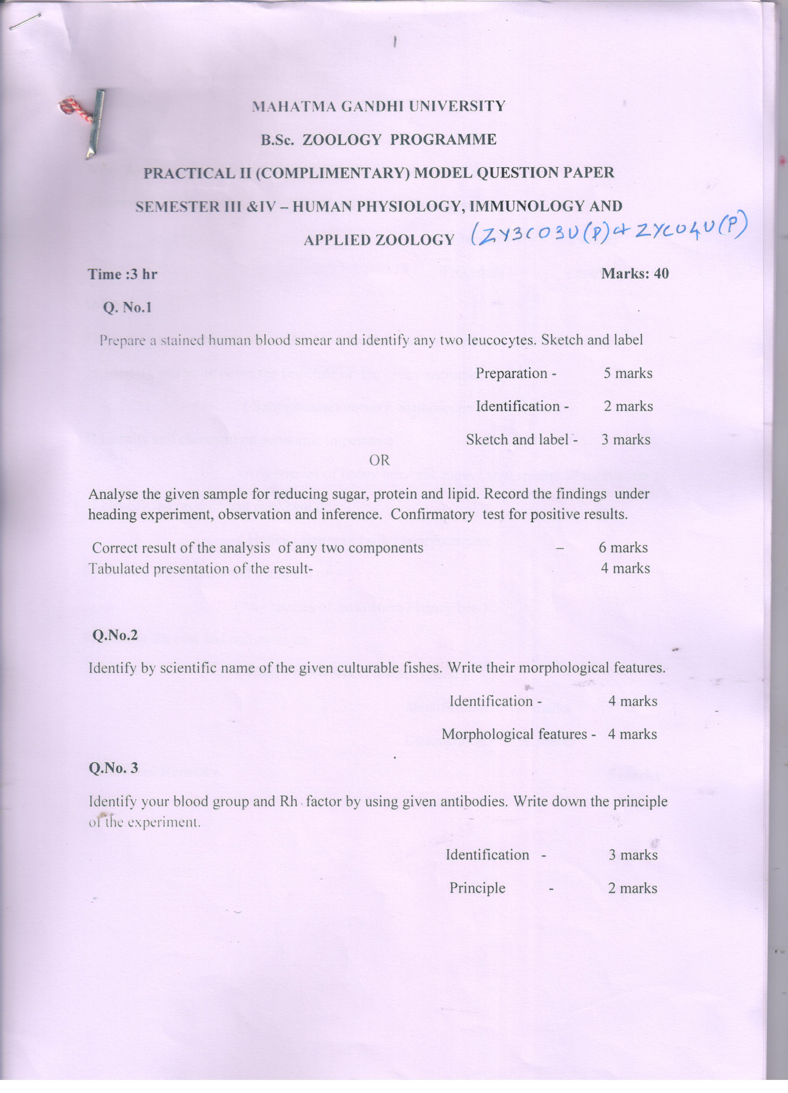 Model Question Papers - MG University : MG University